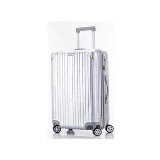 "20"" Rolling Hardshell Luggage - Silver"
