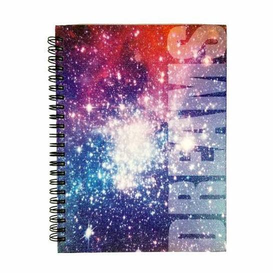 Dream 100 Sheet Journal