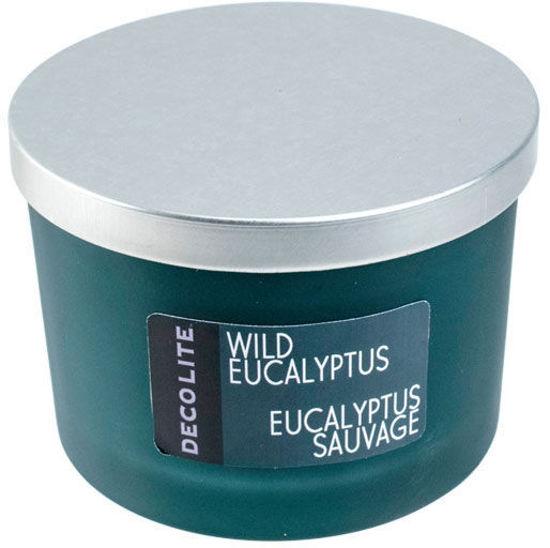 Decolite 3-Wick Jar Candle Wild Eucalyptus