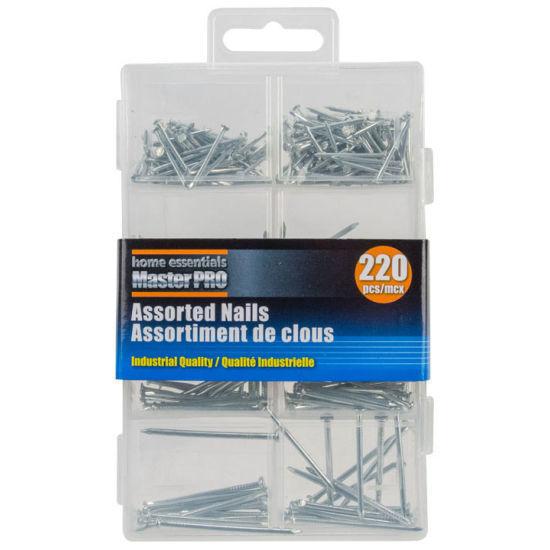 Home Essentials Master Pro Nails Asst - 220Pcs